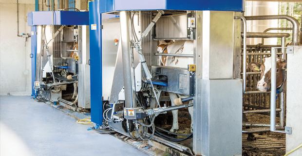 BOGE Scrollkompressor für Melkrobotor